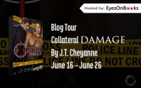collateral damage banner